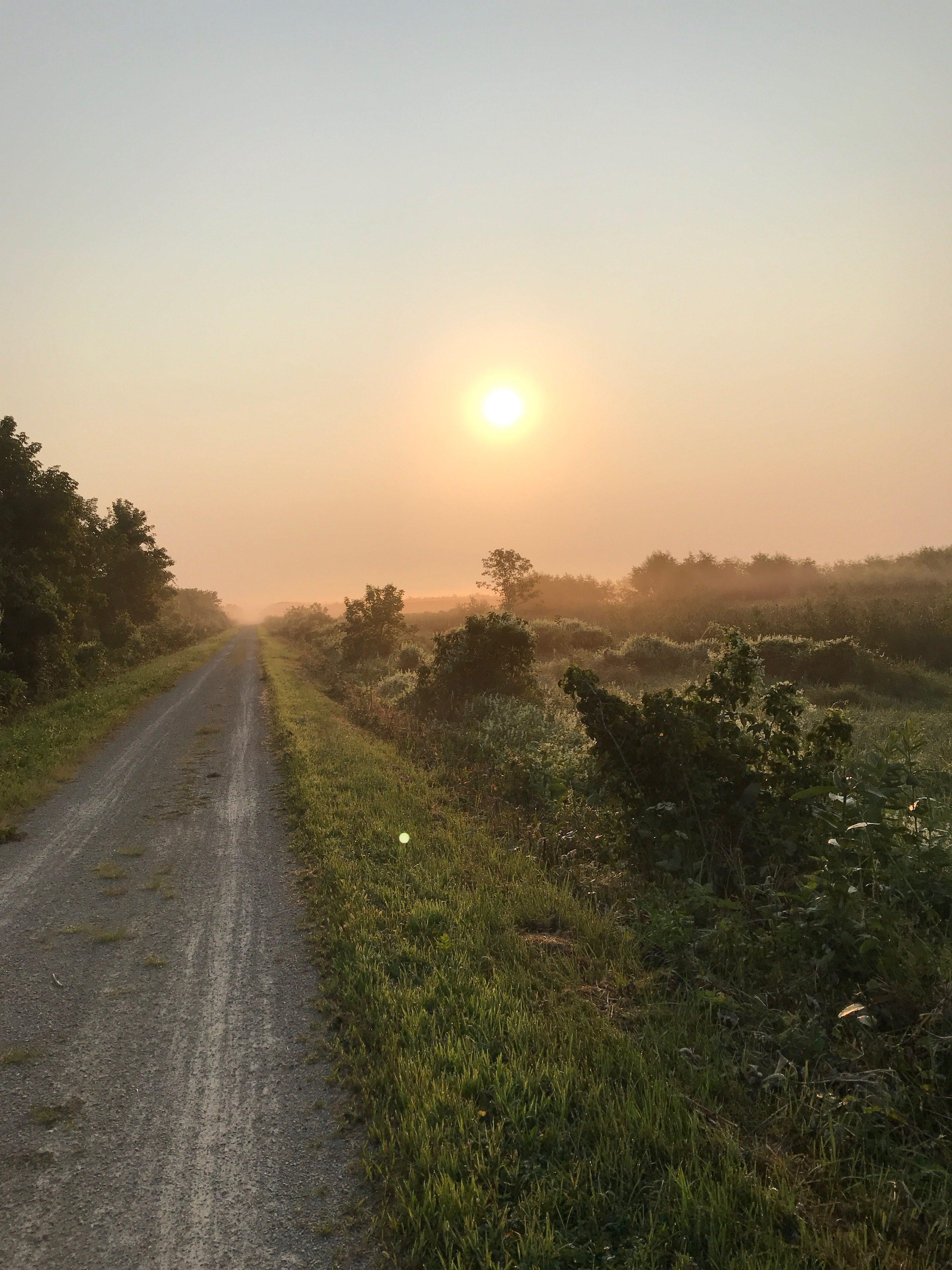 Blog 1: More than enough time